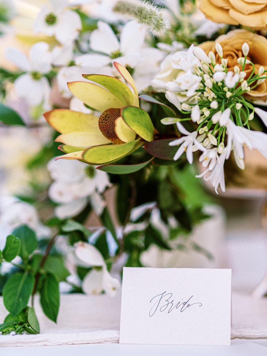 Emily-Burney-weddings-Portfolio-Jennifer-Zachary_middle-aged-love-story-blush-navy-spain-ranch-film-tulsa-jenks_001-2